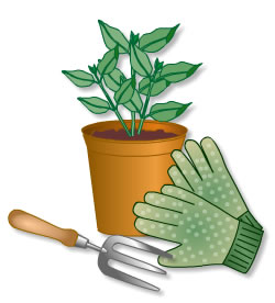 Cartoon image showing gardening gloves, fork and plant